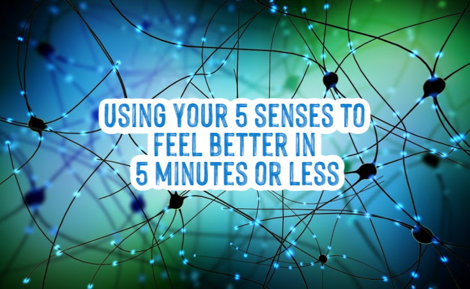 "Use your 5 senses to connect to ""normal"""